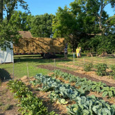 Sharing the Labor, Sharing the Love: Strengthening Community from the Ground Up | Indiana Uplands Food Network