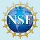 NSF CAREER Part II: Virtual Expert Panel