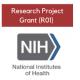 NIH R01 Social Sciences Awardee Panel