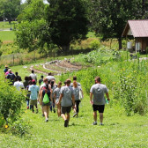 SESE: Summer Experience in Sustainability and the Environment Program
