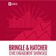Bringle & Hatcher Civic Engagement Showcase