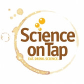 Science on Tap: Drink like a fish: A zebrafish model of fetal alcohol spectrum disorder