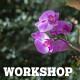 Mindfulness - CAPS Workshop