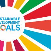 UN SDGs -Taking Action